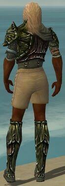 Ranger Elite Luxon Armor M gray chest feet back.jpg