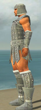 Warrior Ascalon Armor M gray side.jpg