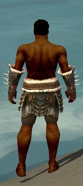 Warrior Norn Armor M gray arms legs back.jpg