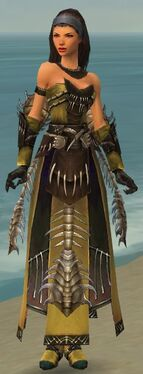 Dervish Primeval Armor F nohelmet.jpg