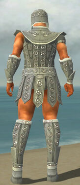 Warrior Ascalon Armor M gray back.jpg