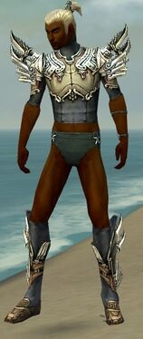 Assassin Asuran Armor M gray chest feet front.jpg