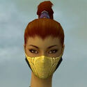 Assassin Kurzick Armor F dyed head front.jpg