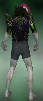 Gloomcrest Tunic M dyed back.jpg