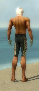 Mesmer Elite Canthan Armor M gray arms legs back.jpg