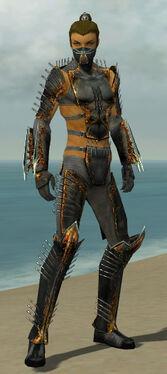 Assassin Exotic Armor M gray front.jpg