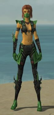 Assassin Luxon Armor F dyed front.jpg