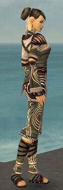Monk Canthan Armor F gray side.jpg