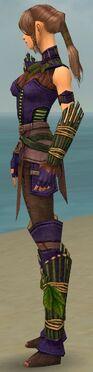 Ranger Druid Armor F dyed side.jpg