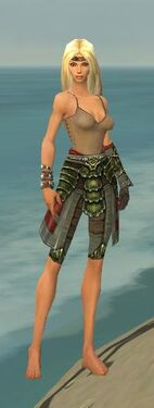 Ranger Elite Luxon Armor F gray arms legs front.jpg