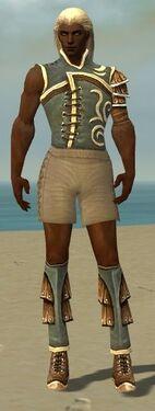 Ranger Shing Jea Armor M gray chest feet front.jpg