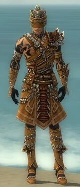 Ritualist Elite Imperial Armor M dyed front.jpg