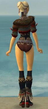 Ritualist Norn Armor F gray chest feet back.jpg