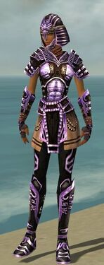 Warrior Ancient Armor F dyed front.jpg