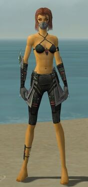 Assassin Luxon Armor F gray arms legs front.jpg