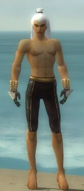 Elementalist Elite Sunspear Armor M gray arms legs front.jpg