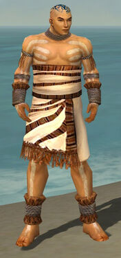 Monk Istani Armor M dyed front.jpg
