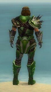 Warrior Deldrimor Armor M dyed back.jpg