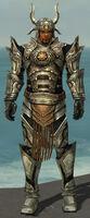 Warrior Elite Sunspear Armor M gray front.jpg