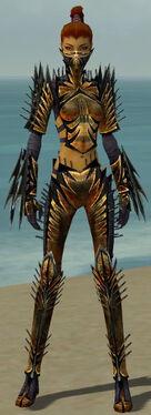 Assassin Elite Exotic Armor F dyed front.jpg