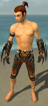 Assassin Elite Exotic Armor M gray arms legs front.jpg