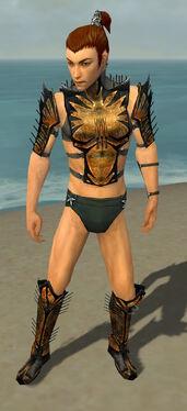 Assassin Elite Exotic Armor M gray chest feet front.jpg