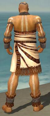 Monk Istani Armor M dyed back.jpg