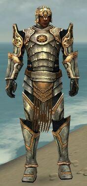 Warrior Sunspear Armor M dyed front.jpg