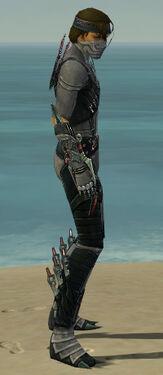 Assassin Elite Canthan Armor M gray side.jpg
