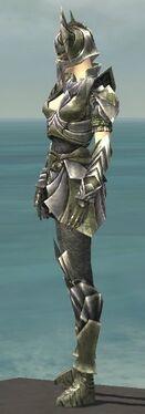 Warrior Templar Armor F gray side.jpg