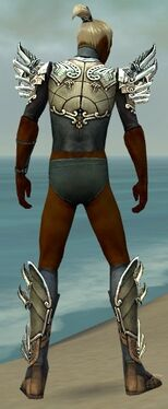 Assassin Asuran Armor M gray chest feet back.jpg