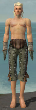 Elementalist Istani Armor M gray arms legs front.jpg