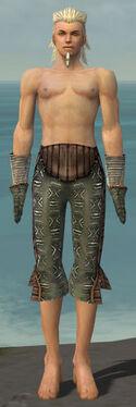 Elementalist Istani Armor M gray arms legs front.jpg
