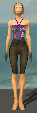 Mesmer Istani Armor F gray arms legs front.jpg