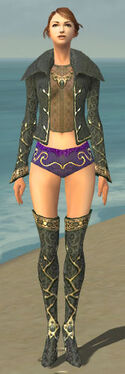 Mesmer Krytan Armor F gray chest feet front.jpg