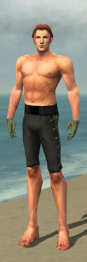 Mesmer Shing Jea Armor M gray arms legs front.jpg