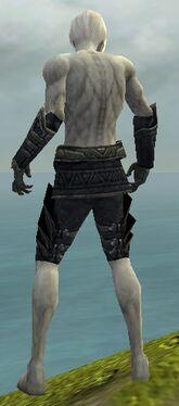 Necromancer Elite Cultist Armor M gray arms legs back.jpg