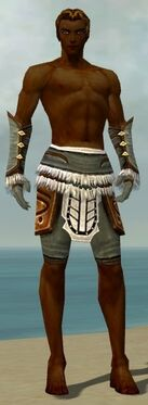 Ranger Canthan Armor M gray arms legs front.jpg