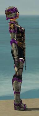 Warrior Sunspear Armor F dyed side.jpg
