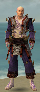 Monk Primeval Armor M dyed front.jpg