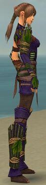 Ranger Druid Armor F dyed side alternate.jpg