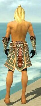 Ritualist Elite Imperial Armor M gray arms legs back.jpg