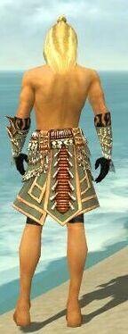 Ritualist Elite Imperial Armor M gray arms legs back.jpg