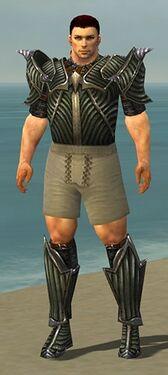 Warrior Wyvern Armor M gray chest feet front.jpg