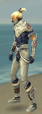 Assassin Norn Armor M dyed side.jpg
