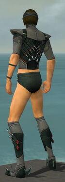 Assassin Seitung Armor M gray chest feet back.jpg