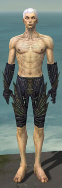 Necromancer Krytan Armor M gray arms legs front.jpg