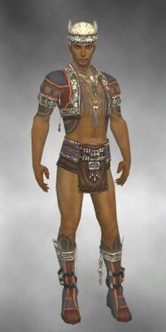 Ritualist Asuran Armor M gray chest feet front.jpg