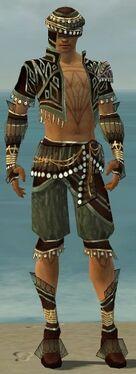 Ritualist Vabbian Armor M gray front.jpg