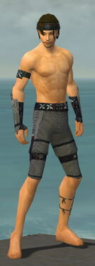 Assassin Shing Jea Armor M gray arms legs front.jpg